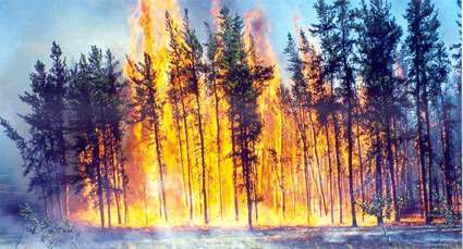incendie14.jpg