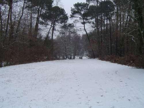 canejan sous la neige 025.JPG