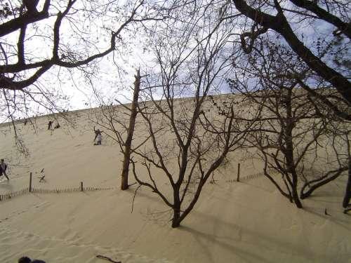 LA dune du pyla 038.jpg