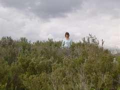 grimaud 2009 152.jpg
