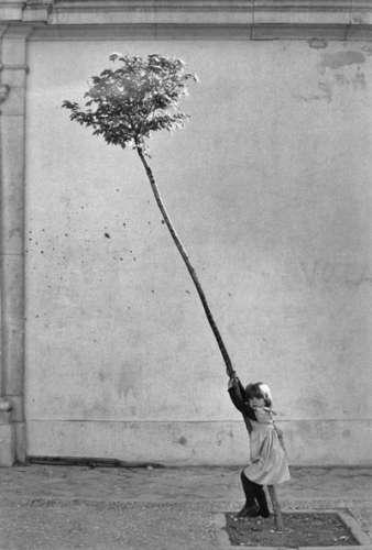 weiss-petite-fille-arbre.jpg