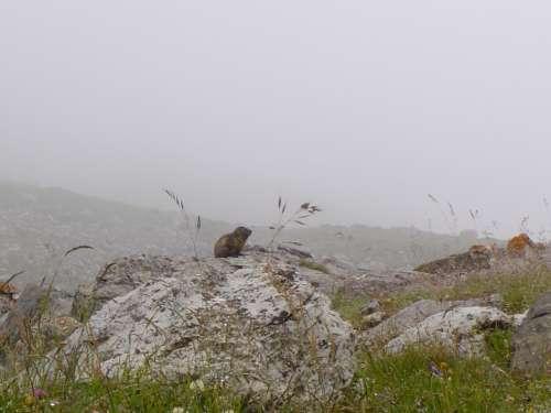 randos,autour de valloire,juillet 2011