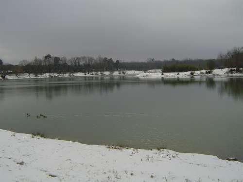 canejan sous la neige 055.JPG