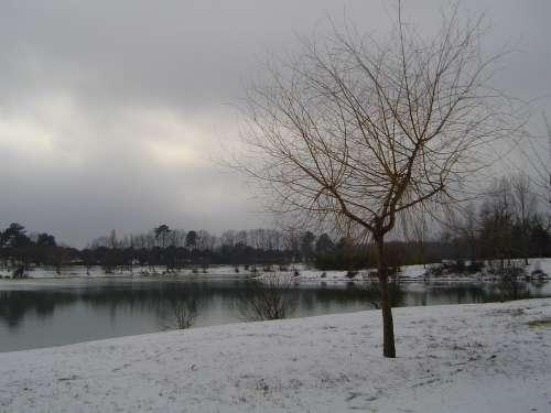 canejan sous la neige 054.JPG