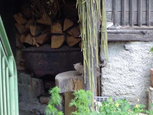 luchon juin 2007 077.jpg