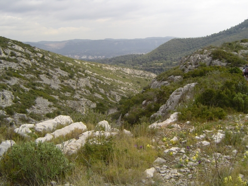 grimaud 2009 143.jpg