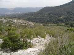grimaud 2009 153.jpg