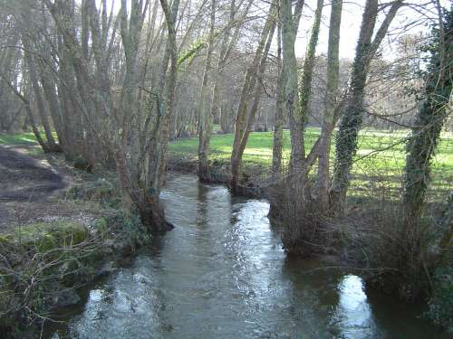 le ruisseau.jpg