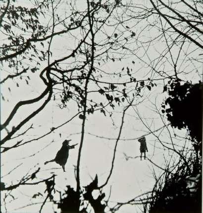 ronis-lorraine-hiver-1954.jpg