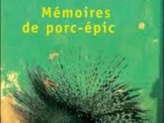 memoire-de-porc-epic-alain-mabanckou-5794414.jpg