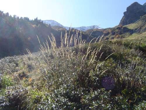 luchon octobre 2008 144.jpg