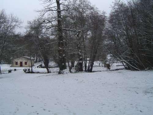 canejan sous la neige 026.JPG