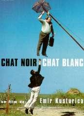 17-Chat-noir-chat-blanc.jpg